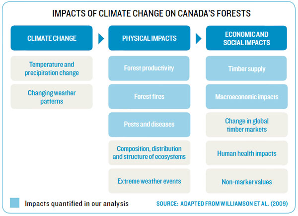 Impacts of climate change on Canada's forests