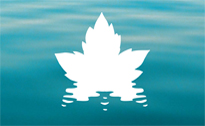 Water Sustainability and the Future of Canada's Natural Resource Sectors