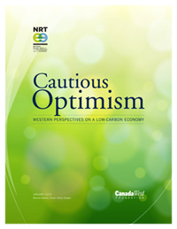 Cautious Optimism - cover image
